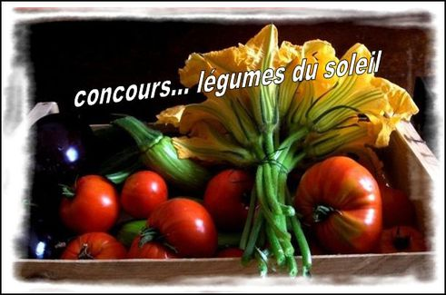 http://img.over-blog.com/584x325/3/79/32/50/Messages/photo-concours.JPG