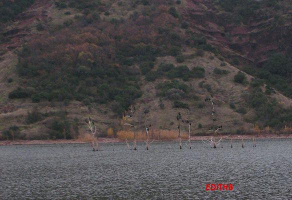 lac du salagou (3)