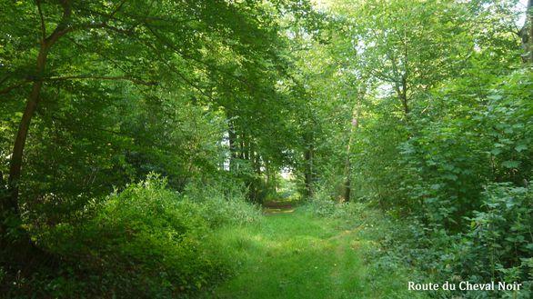 3-Route-du-Cheval-Noir.jpg