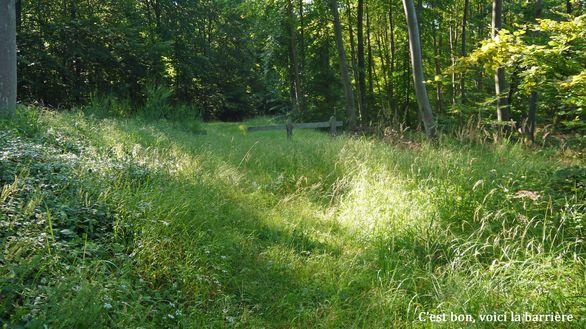 32-Chemin-du-Pont-Cardon.jpg