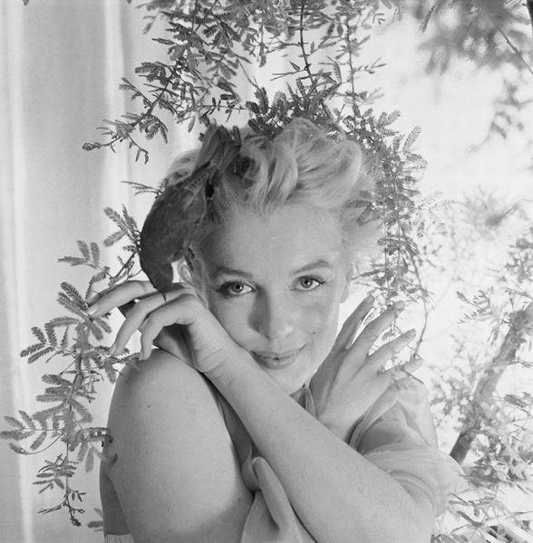 Monroe, Marilyn 109
