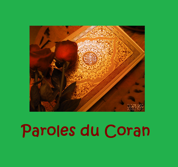 http://img.over-blog.com/590x556/4/38/98/77/illustrations/illustrations2/illustrations3/dessins/Paroles-du-Coran.png