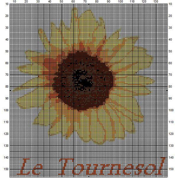 tournesol33