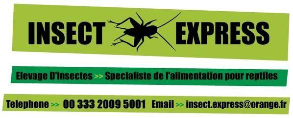 Les bons plans by Bacchus - Dernière édition le 19-01-10 Insect-express2