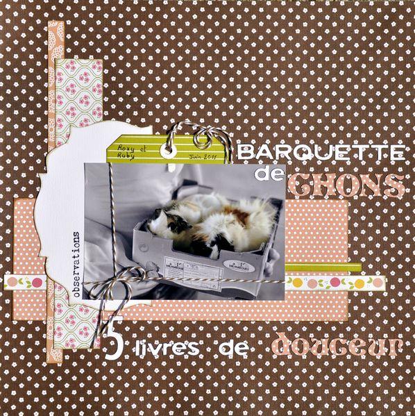 Barquette-de-Chons.jpg