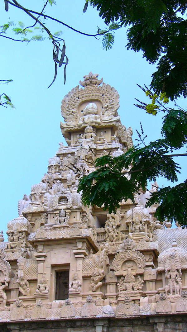 223tanjore