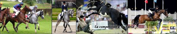 Diapo-chevaux-competitions-2.jpg