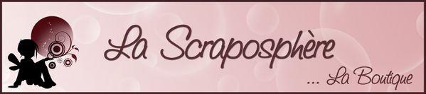 SCRAPO 900