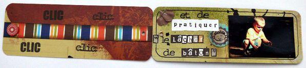 Petit Galibot Charbonnier ou simple curieux 08