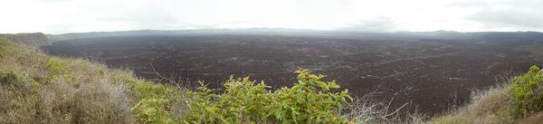 Volcan_sierra_negra---ofbarea.jpg