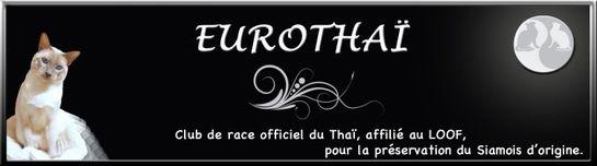 logo-eurothai