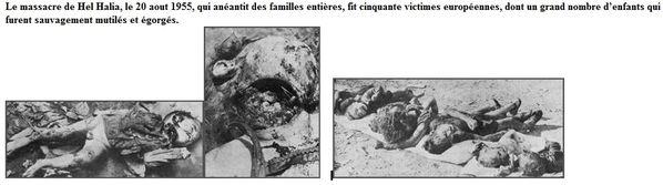 Les-meurtres-du-FLN-2.jpg