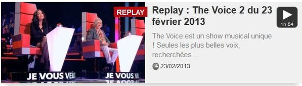 the voice-copie-1