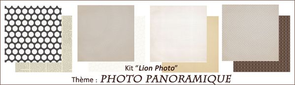 Kit Lion Photo