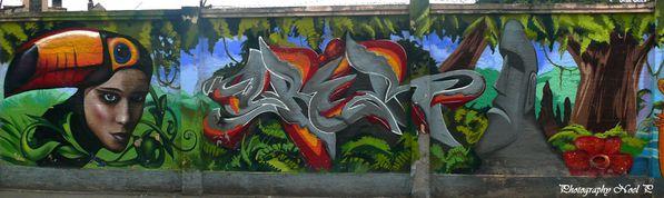 St Pet le 8 juillet 2012 graffiti (127)Pats,Cberio