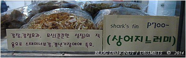 blog-dehondt---desmets-c--2013-3047-border.jpg