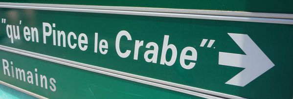 pince le crabe