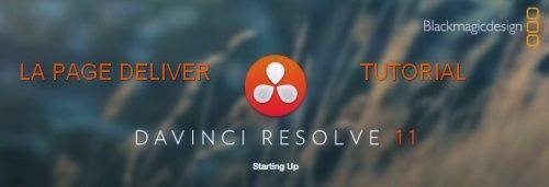 PAGE-DELIVER-DAVINCI-RESOLVE-11--500x171-.jpg