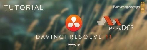 DAVINCI-RESOLVE-11-EASY-DCP-60ok.jpg