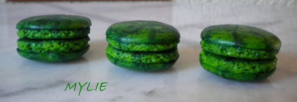 coques macarons 5