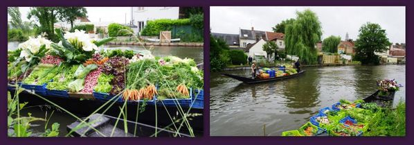 Picardie Amiens 22 24 juin 2013 montage hortillons