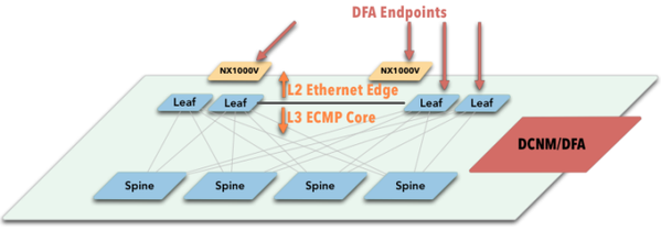 DFA-Endpoints-copy-1.png