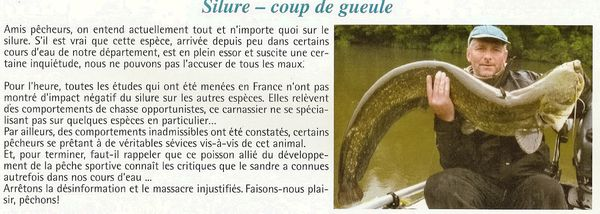 article silure