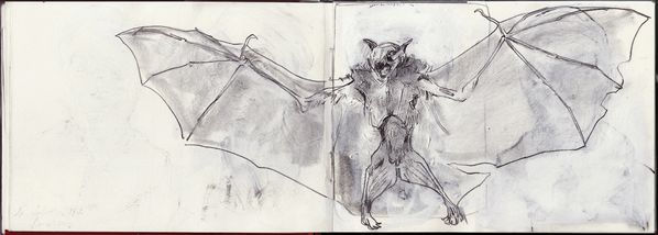 carnet double pages