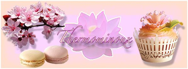 Printemps THERMOMINOUX 00-2