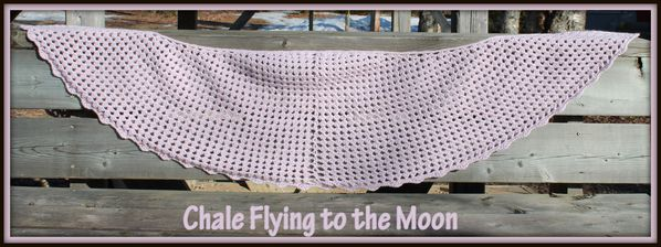 montagechale flying to the moon 2