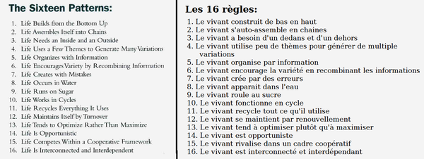 16principes