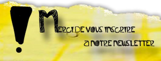 inscription-newslette2r