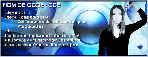 Fiche Ice