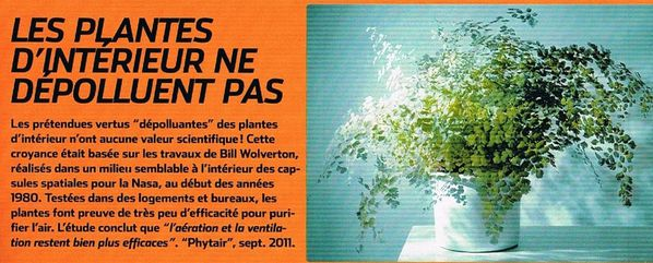 science-et-vie-plantes-ne-depolluent-pas-in-natures-paul-k.jpg