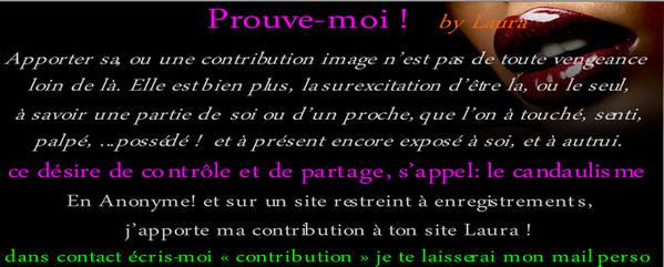 contribution2-prouve-moi- by Laura