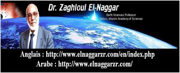 VIDEOS ET SITES Zaghloul An-Najjar