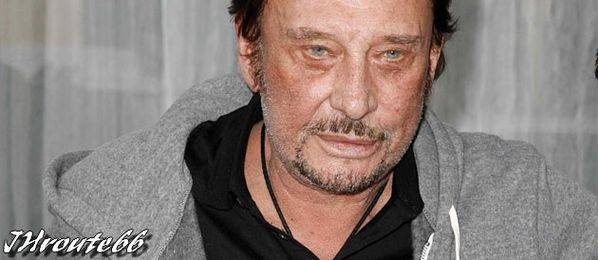 72959 une-hallyday-face