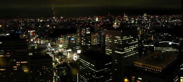 Tokyo_006_Shinjuku-by-night.JPG