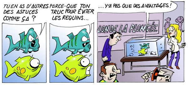 Requins---salon-de-la-plongee-copie.jpg