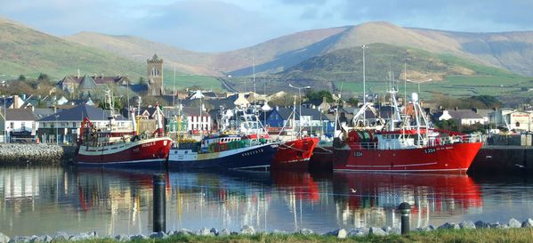 Dingle-Harbour--2-.jpg