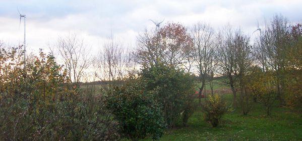 panoramique3