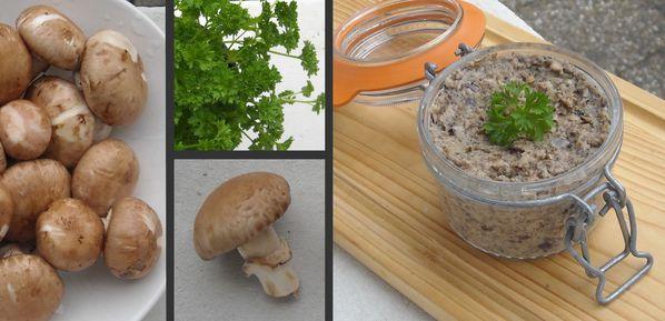 champignons-012-copie-1.jpg