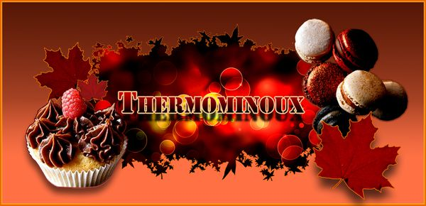 THERMOMINOUX AUTOMNE FINAL