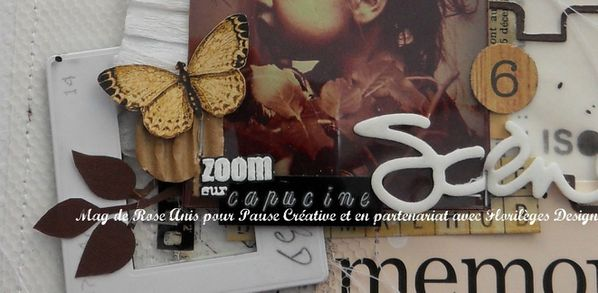 album-PHOTO-zoom-TITRE-4.jpg