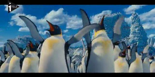 eG10c2xnMTI= o les-pingouins-sclatent-sur-la-banquise