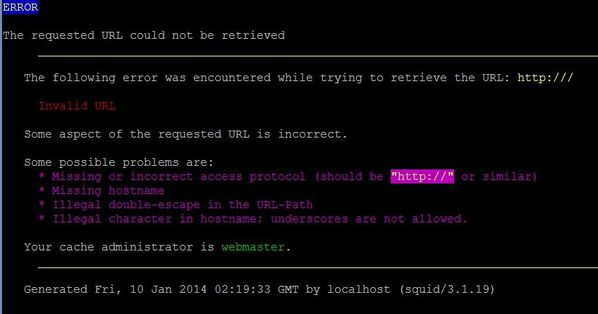 squid_showofftravelbags.com_error_100114.JPG