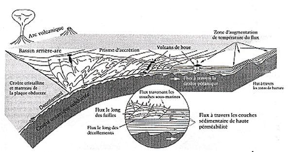 mode-elimination-des-fluides---subduction.jpg