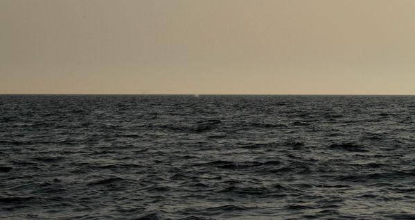 CACHALOTS-DU-SOIR-7433-filtree--3m.jpg