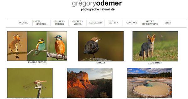 grégory Odemer1