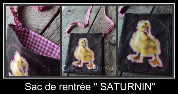 Picnik-collage-saturnin.jpg